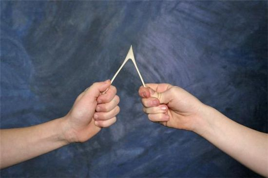 ▲누구의 소원이 이뤄질까 '행운의 위시본(Lucky Break Wishbone)'