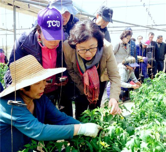 전원생활 꿈꾸는 예비 귀농·귀촌인을 위한 조언 - 아시아경제