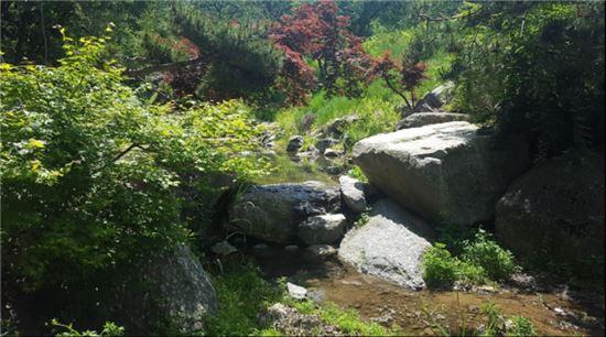 ▲불암산 공원 '물 치유 공간' (출처=서울시)