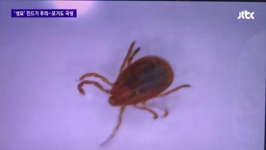 [사진출처=JTBC 캡처]