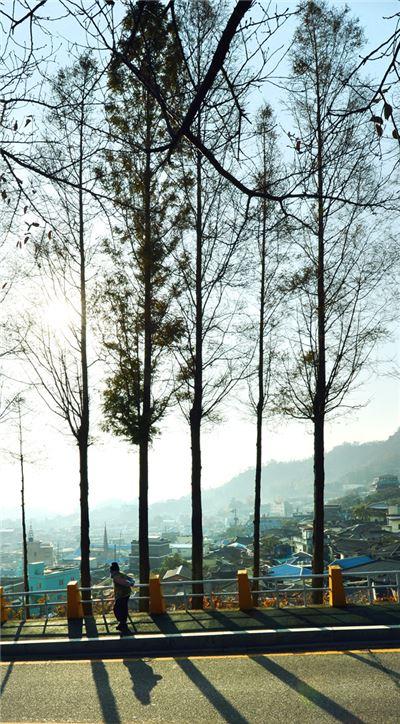 유달산 자락에서 만난 풍경