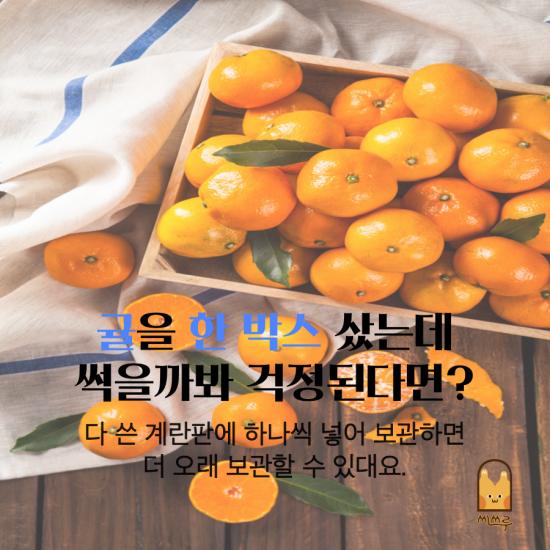 [넘겨보기]집에 있는 재료로 쉽게, 자취생 생활 꿀팁 16가지