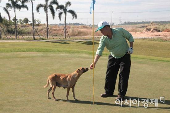 호주의 일부 골프장에서는 애완견과 동반 라운드를 할 수 있다.