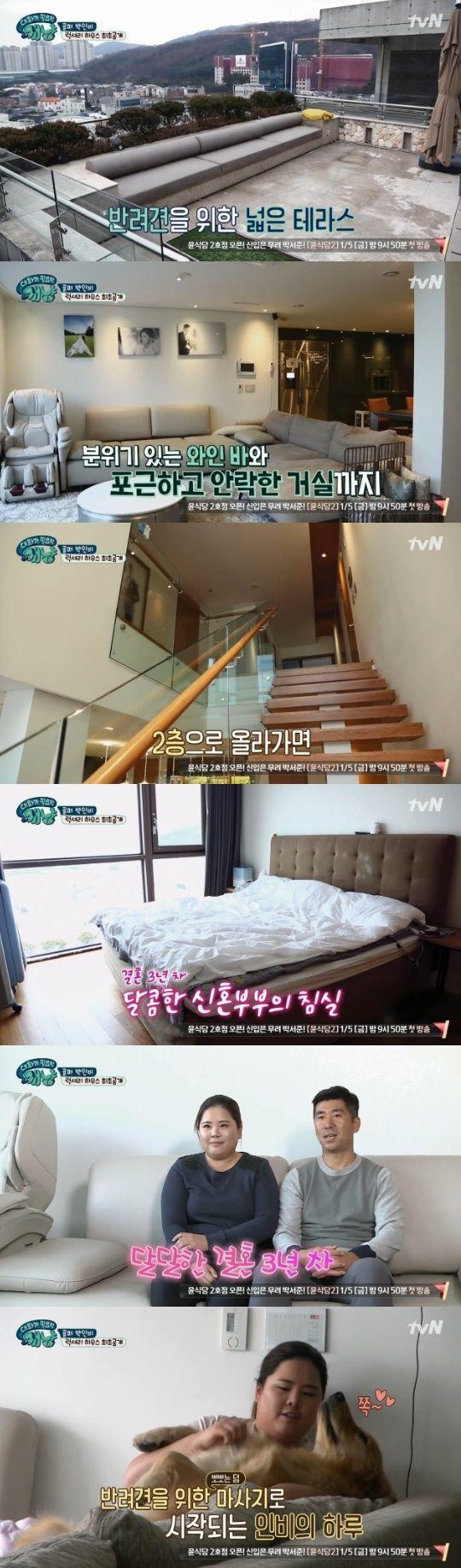 사진=tvN '대화가 필요한 개냥' 캡처