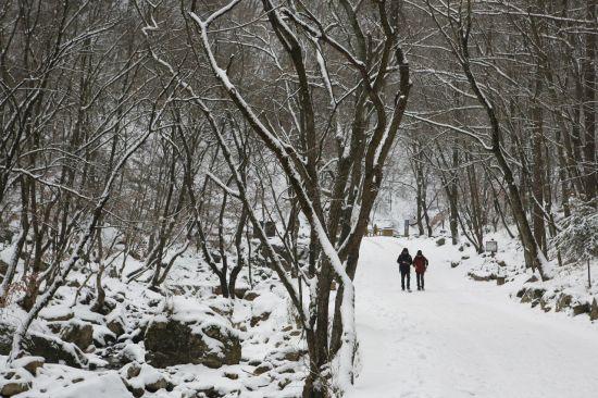 춘천 구곡폭포 산책로