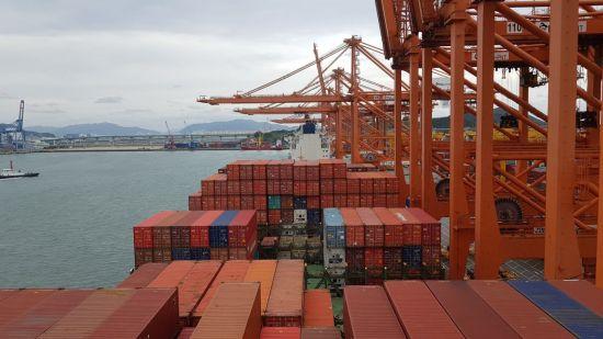 """""""무관심·헛발질·역부족""""…정부의 '구멍 뚫린' 수출 기업 관리"""