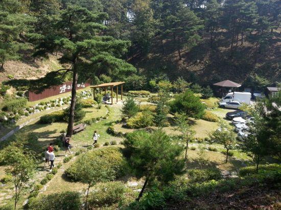 하늘숲추모원 내 수목장림 전경사진. 한국산림복지진흥원 제공