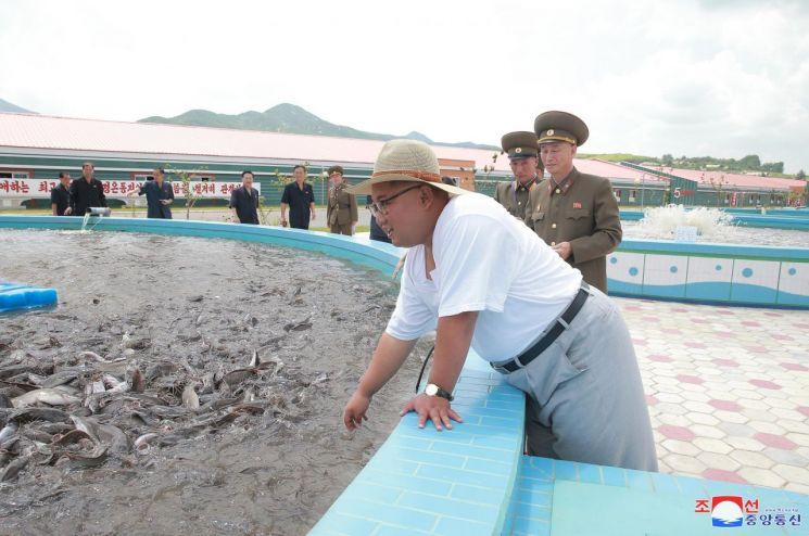 김정은 북한 국무위원장이 황해남도 삼천군의 메기공장을 현지지도했다고 조선중앙통신이 6일 보도했다(사진=연합뉴스).