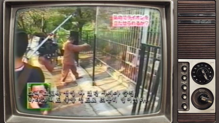 일본 아사히TV 출연 당시 동물원을 찾은 양 씨는 사자를 자신의 기(氣)를 통해 주저 앉히는 시연을 보여 화제가 된 바 있다. 사진 = TV 아사히 방송 화면 캡쳐