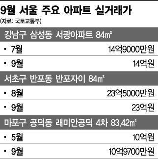 눈치보기 들어간 강남 부동산 '폭풍전야'