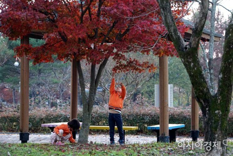 [포토]가을을 따는 아이들