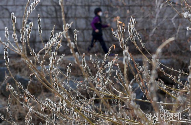 [포토]'봄이 오나 봄' - 아시아경제