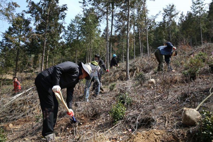 서울시, '미세먼지 저감' 10만8400그루 나무 심는다