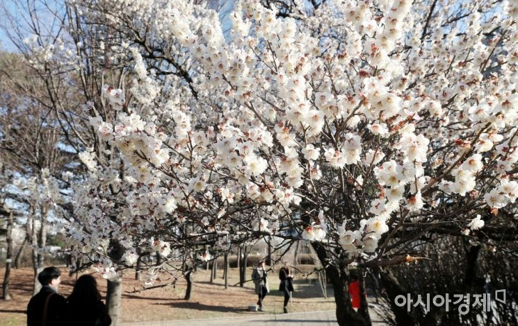 [포토] 화창한 봄날의 오후