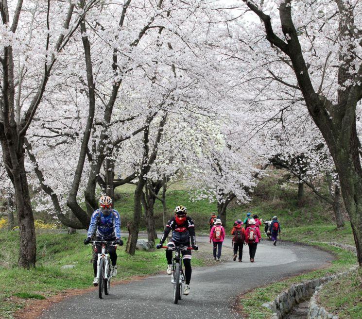 광주 동구, 제3회 '동구의 봄' 사진공모전 개최