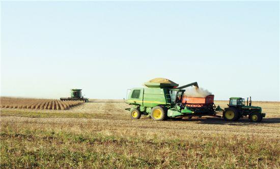 콩 수확하는 러시아 연해주 한국기업 농장. 현대중공업이 설립한 현대아그로는 올해 3천500㏊ 밭에 콩 등을 심어 풍성한 수확을 거뒀다.
