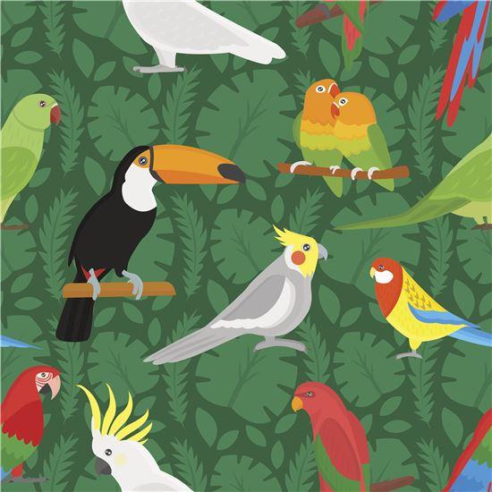 전문가의 반복학습을 거친 앵무새는 약 800개의 어휘를 구사하며 기본적인 회화가 가능한 언어능력을 갖추게 된다. 사진 = Gettyimagebank