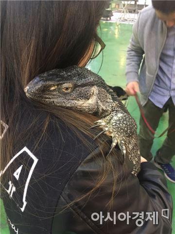 사진=서울호서직업전문학교 학생이 도마뱀을 안고 있다.