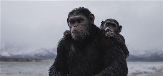 영화 '혹성탈출: 종의 전쟁' 스틸 컷