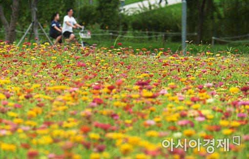 [포토]'오늘은 선선한 날씨'