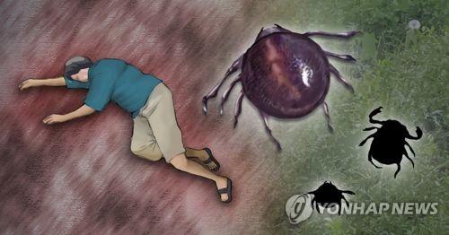 진드기 감염[이미지출처=연합뉴스]