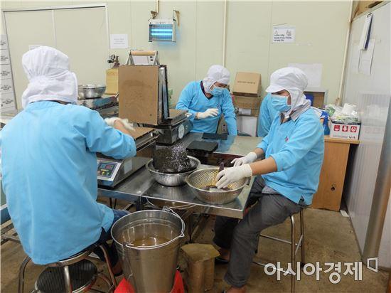 비비고 호찌민 공장의 베트남인 직원들이 김스낵을 만들고 있다.(사진=오종탁 기자)