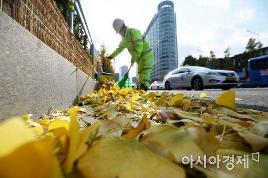 [포토]도롯가에 떨어진 낙엽 치우는 환경미화원