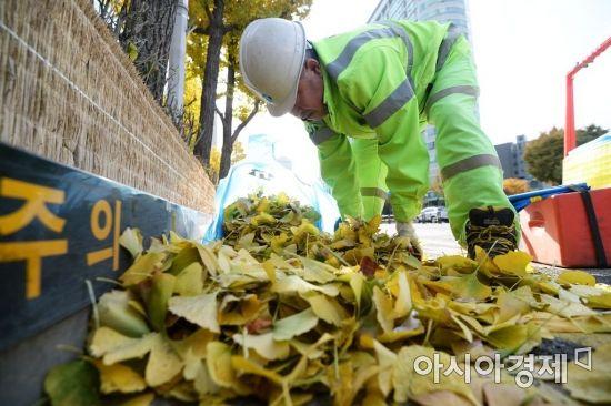 [포토]낙엽과의 전쟁