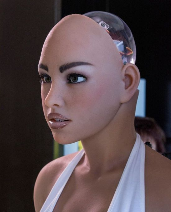 미국 어비스 크리에이션사가 개발한 섹스로봇, '하모니(Harmony)'의 모습(사진=https://realbotix.com/)