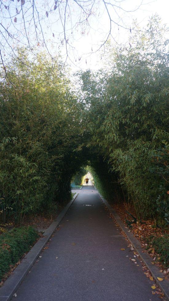 파리 '프롬나드 플랑테'. 과거 고가철길에 만들어진 정원의 모습