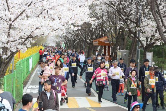 14돌 '금천하모니벚꽃축제' 참가자 모집