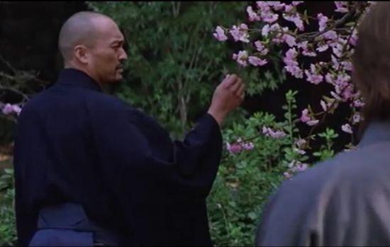 영화 '라스트 사무라이'에서 무사도의 상징처럼 등장하는 벚꽃. 그러나 정작 사무라이들이 크게 활약했던 15~16세기에 벚꽃놀이는 과거 귀족들의 문약한 놀이로 멸시되곤 했다.(사진= 영화 '라스트 사무라이' 장면 캡쳐)