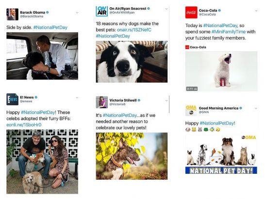 사진='애완동물의 날' 홈페이지 캡처