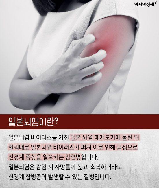 [카드뉴스]'일본뇌염 주의보' 모기 조심하세요!