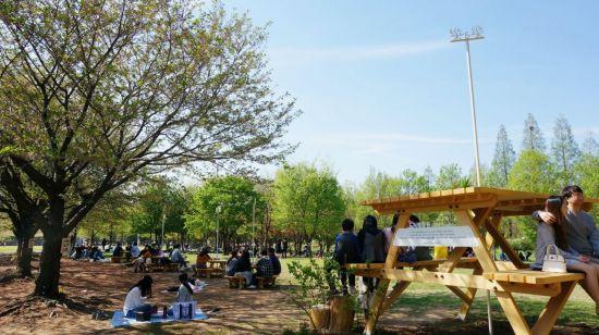 락앤락의 서울숲 그린피크닉 캠페인 모습