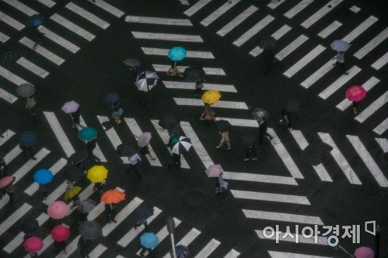 [포토] 비내리는 서울