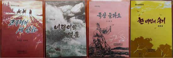 北 최신소설 11권, 국내 정식출판 추진