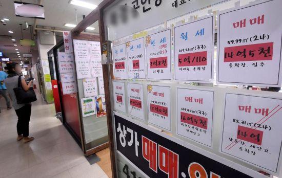 [9·13 부동산대책]위헌 논란, 국회 법안심의…첩첩산중