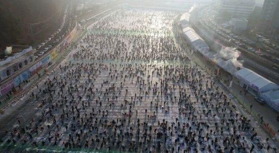 '잡아 먹고 손맛 짜릿'…화천 산천어 축제, 동물학대의 또 다른 이름