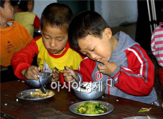 정부도 지난해 가을 옥수수 1만t을 지원하는 과정에서 식량지원 모니터링을 하려했지만 북측의 반대한 것으로 알려졌다.