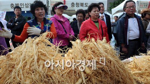 [포토]'2010 대한민국 인삼축제'