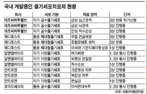 """""""줄기세포 연구분야 획기적 사건될 것"""""""
