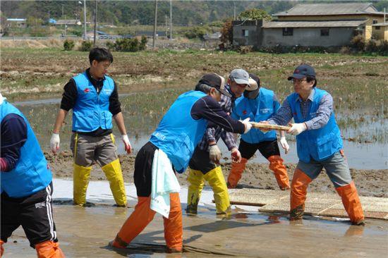 강영원 한국석유공사 사장을 비롯한 임직원이 1사1촌 모내기 활동을 하는 모습.