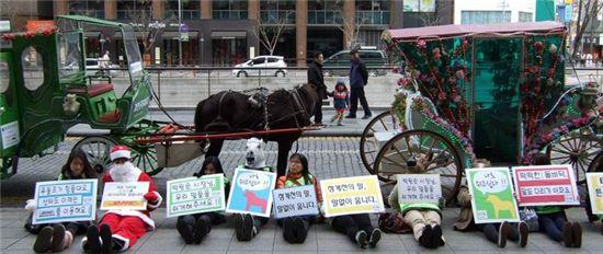 ▲ 지난해 12월 동물사랑실천협회와 한국동물보호연합 관계자들이 청계천 마차 앞에서 시위를 벌이는 모습(출처: 한국동물보호연합 홈페이지)