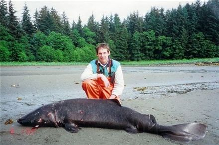 ▲ 알래스카 일리암나호에서 발견된 괴생물체(출처: 허핑턴 포스트)