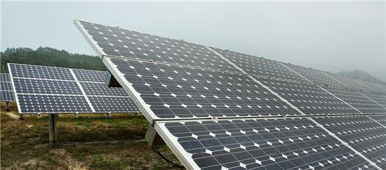 삼성물산은 풍력과 태양광 등 신재생에너지 사업에 박차를 가하고 있다. 사진은 지난 2008년 진도에 건설한 태양광 발전소.