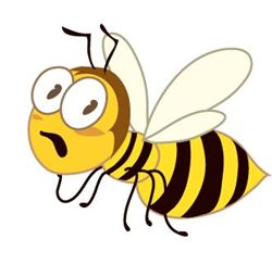 투자자들이 꿀벌에게서 배워서는 안 될 교훈은...