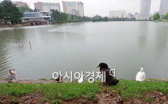 [포토]호수로 가고파