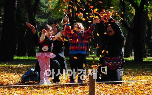 [포토]가을로 물든 서울