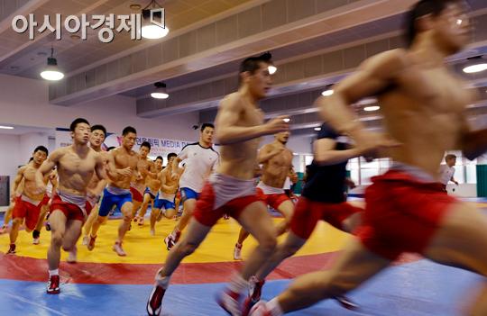 레슬링 국가대표팀[사진=아시아경제 DB]